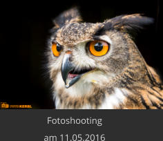 Fotoshooting  am 11.05.2016